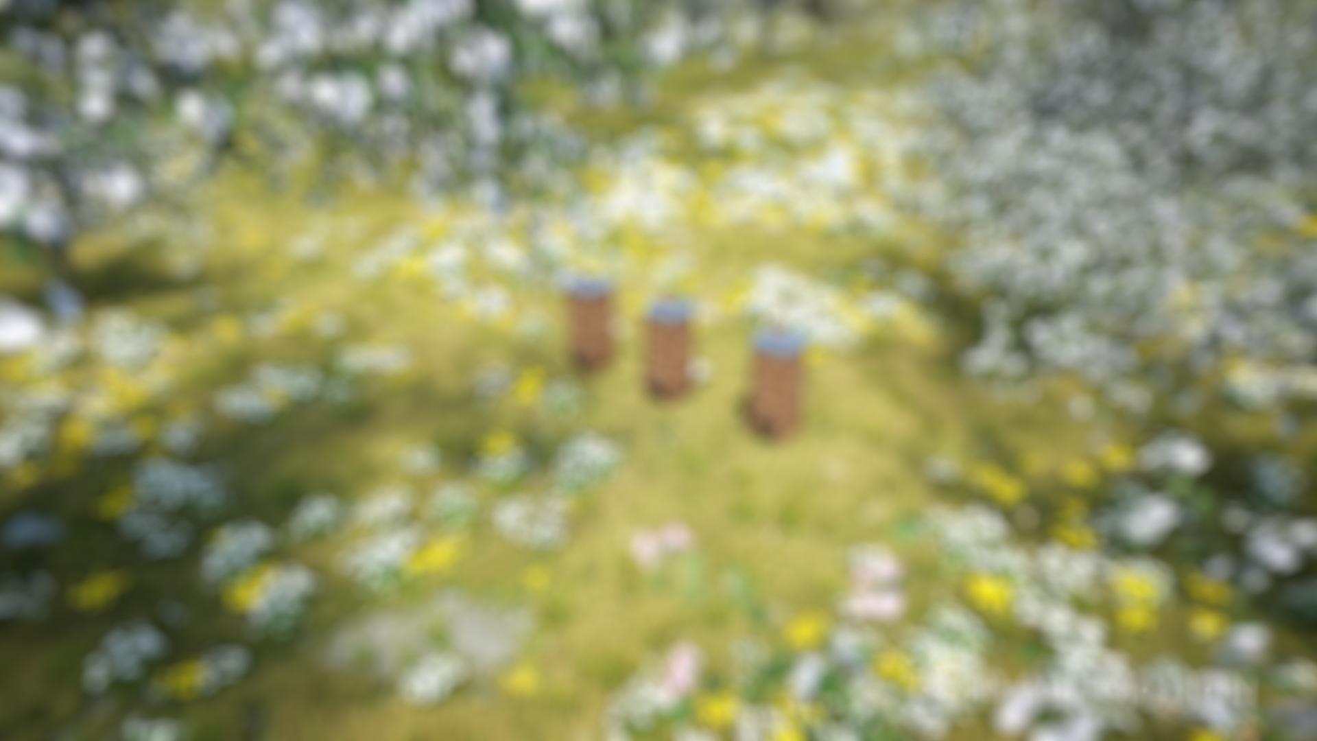 Varroamilbe_27-blur-4